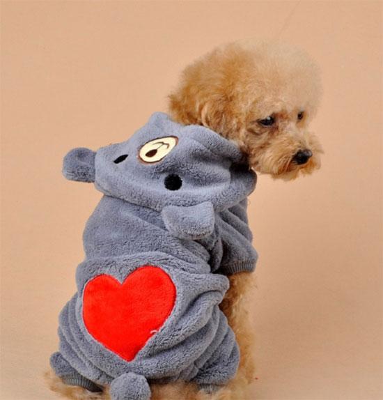 Костюм для маленькой собаки с серчеком