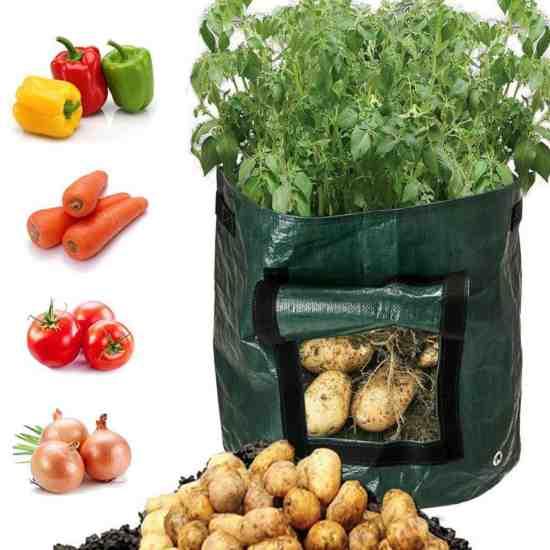 Мешки для выращивания овощей