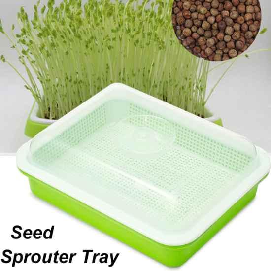 Лоток для проращивания семян купить на Али.экспресс