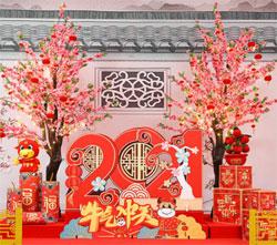 AliExpress на китайский Новый год